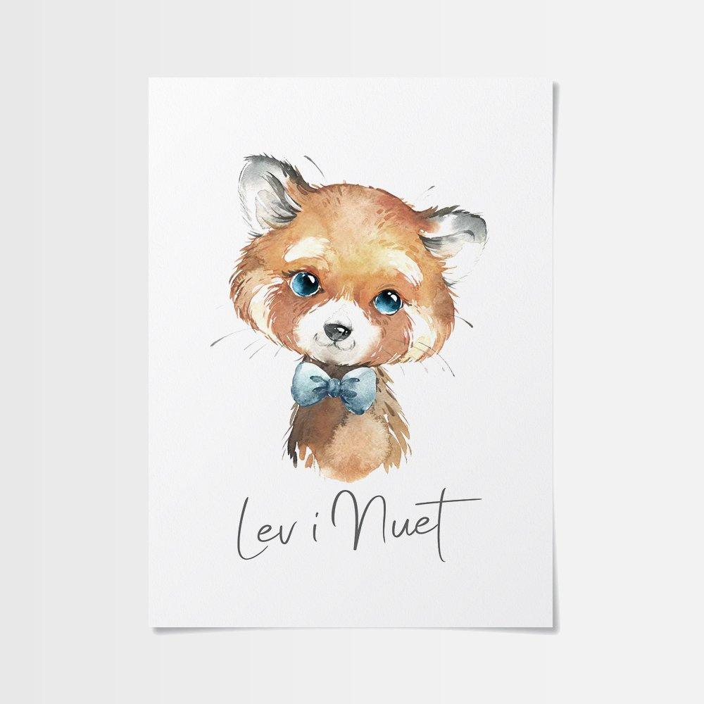 Billiga tavlor med söt röd panda
