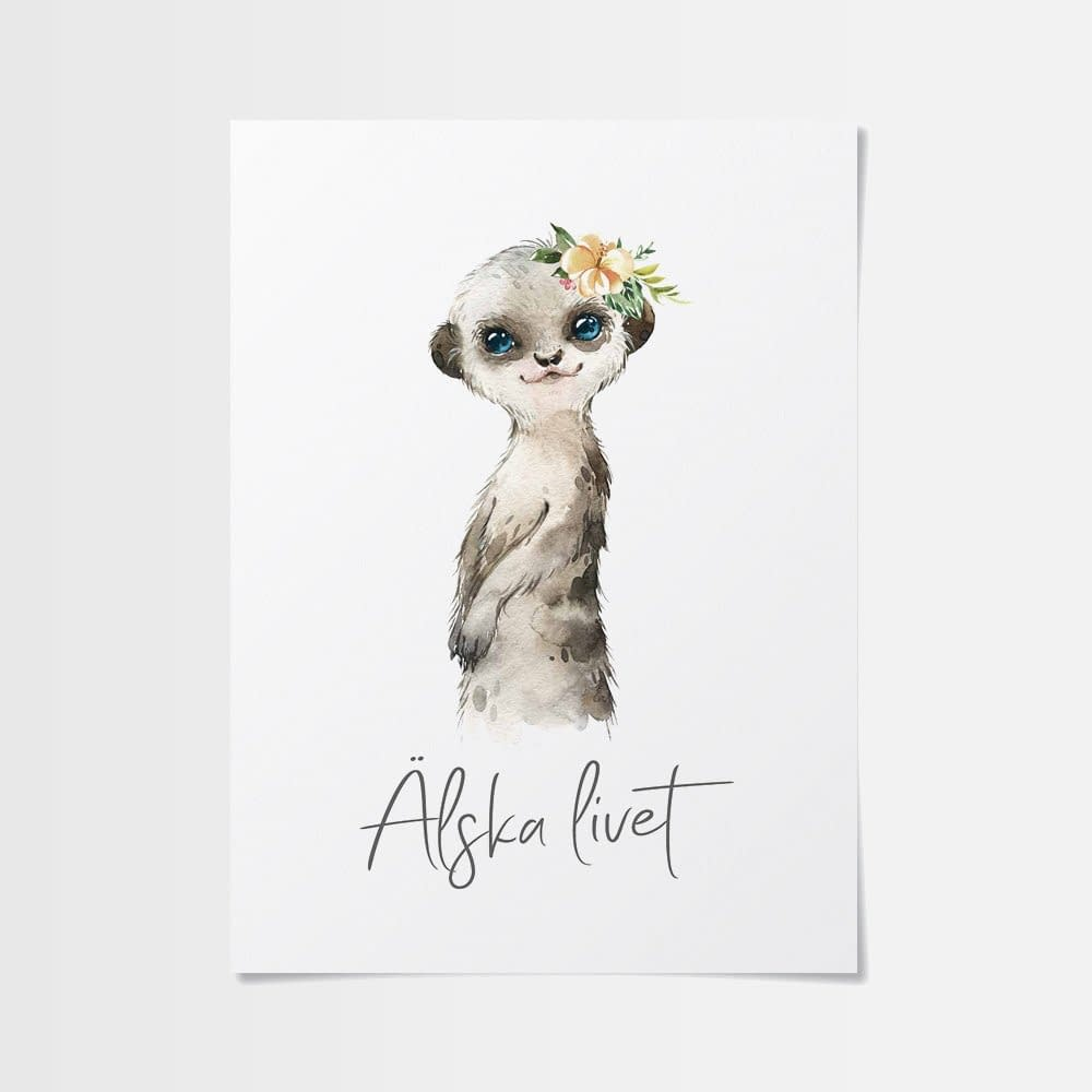 Målarbilder djur av söt surikat