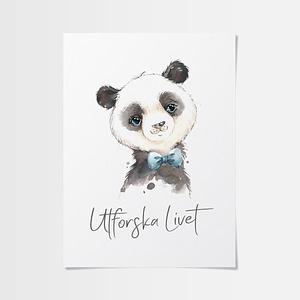 Doppresent tavla med söt panda