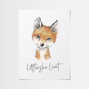 Små posters med söt räv