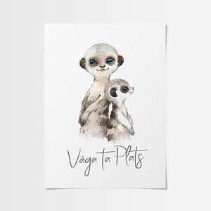 Poster 40x50 med surikatfamilj