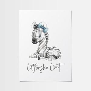 Akvarell poster av en gullig zebra